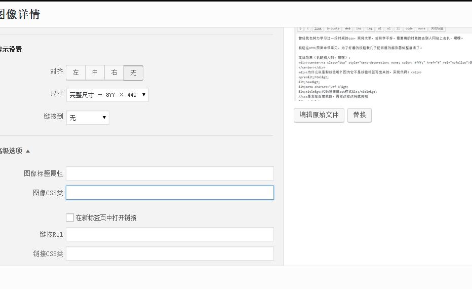 代码狗wordpress教程